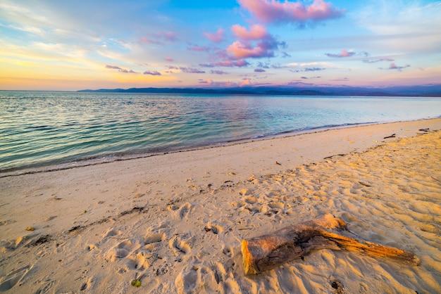 Pastel ciel coloré, nuages et paysage marin au crépuscule. grand angle de vue de la plage de sable avec fragment de tronc au premier plan. Photo Premium