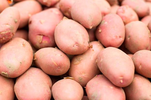Patates Photo Premium