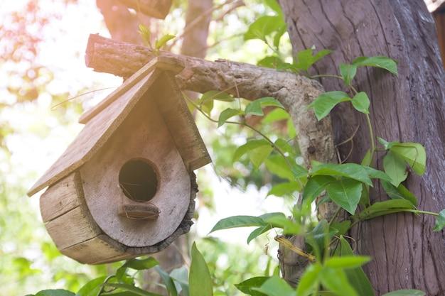 Pays Rural Jardin D'oiseaux Petit Photo gratuit