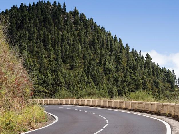 Paysage d'arbres avec autoroute Photo gratuit