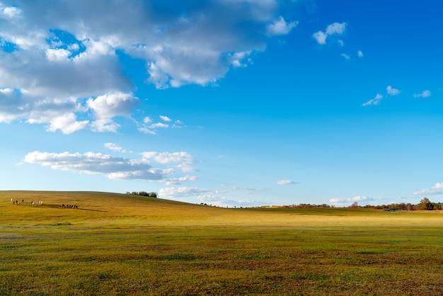 Paysage au crépuscule des prairies Photo Premium