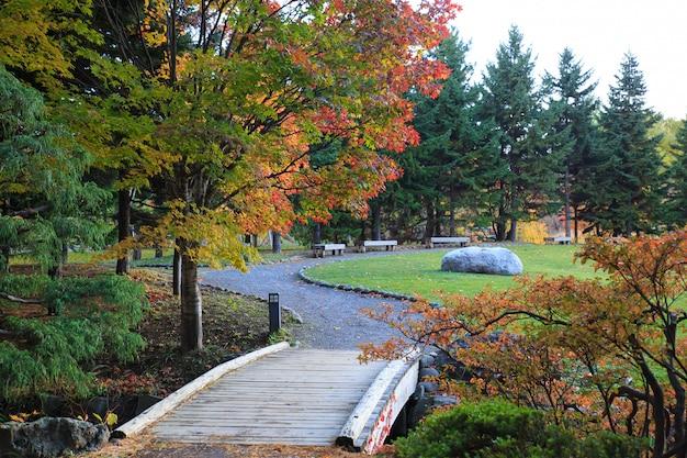 Paysage d'automne au parc nakajima, ville de sapporo, japon. Photo Premium