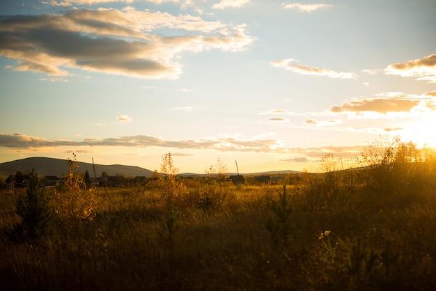 Paysage D'automne Dans Un Champ D'herbe Jaunie Dans La Soirée, Russie, Oural, Septembre Photo Premium