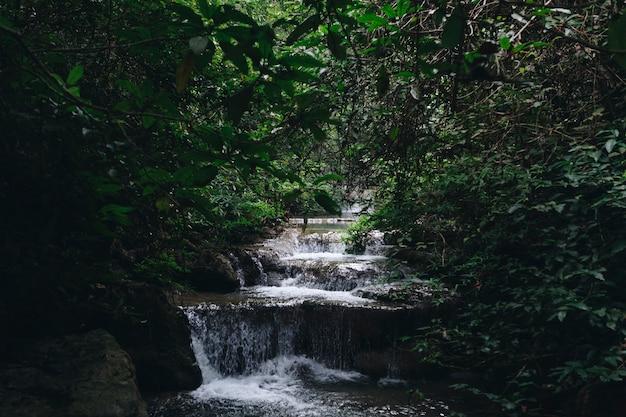 Paysage de cascade Photo gratuit