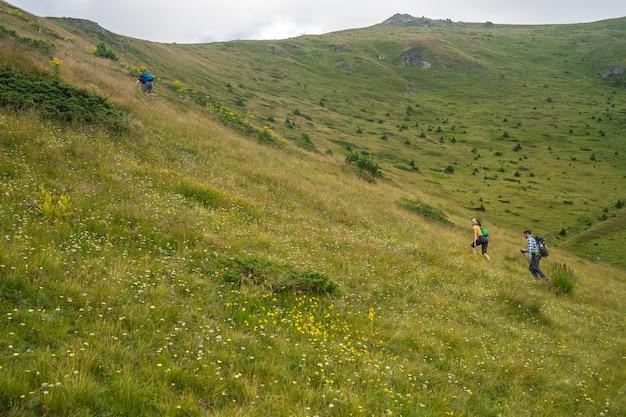 Paysage D'une Colline Couverte De Verdure Avec Des Randonneurs L'escalade Sous Un Ciel Nuageux Photo gratuit