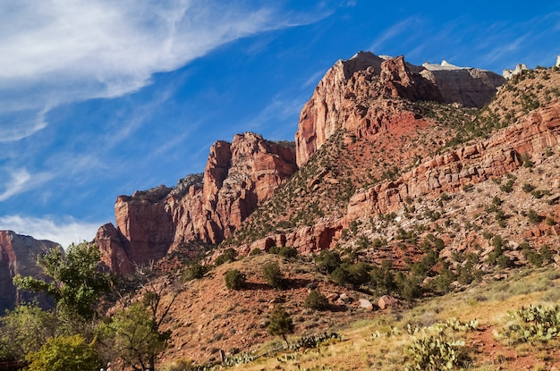 Paysage coloré de zion parc national utah Photo Premium
