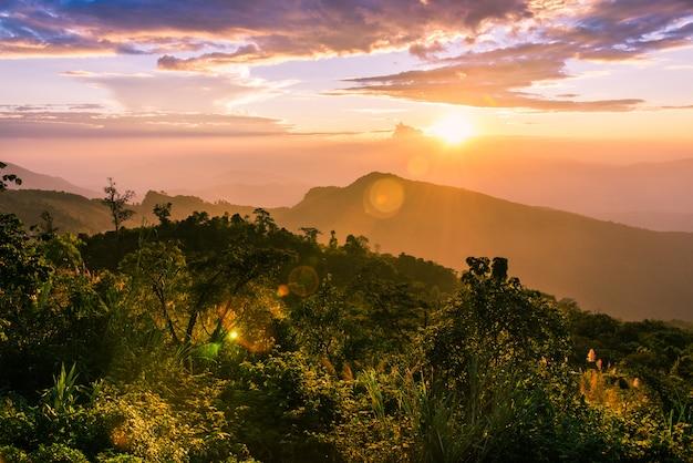 Paysage de coucher de soleil sur les montagnes de brume et ciel crépusculaire sur les collines de la forêt. Photo Premium