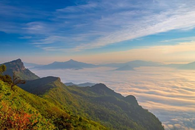 Paysage du lever du soleil sur la montagne à phu chi dao, thaïlande Photo Premium