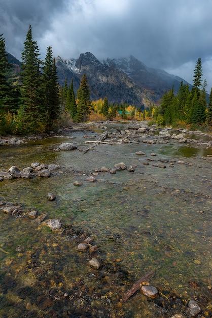 Paysage Du Parc National De Grand Teton Photo Premium