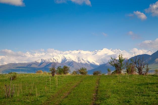 Paysage D'été Avec Une Route Rurale Dans Les Montagnes Photo Premium