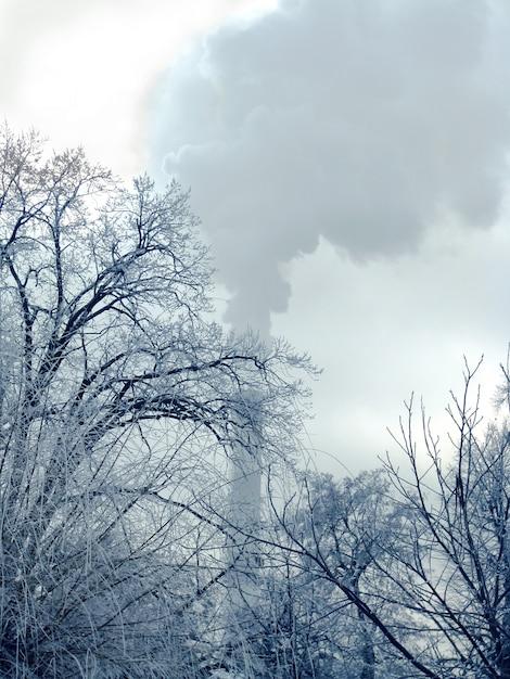 paysage d 39 hiver avec la fum e provenant du tuyau de chauffage et des arbres gel s t l charger. Black Bedroom Furniture Sets. Home Design Ideas