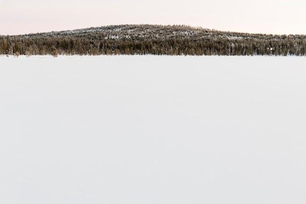 Paysage d'hiver à kiruna en laponie en suède Photo Premium