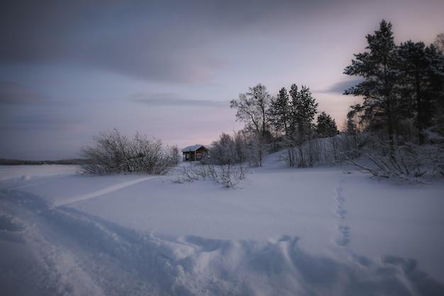 Paysage D'hiver Avec Une Maison Et Une Allée Pelletée Photo gratuit