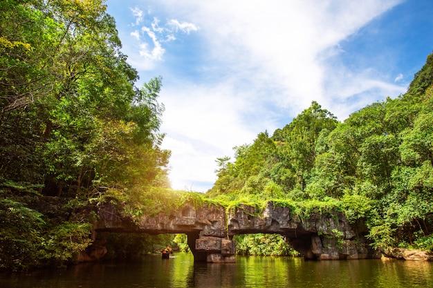 Paysage de lac de montagne. Photo Premium