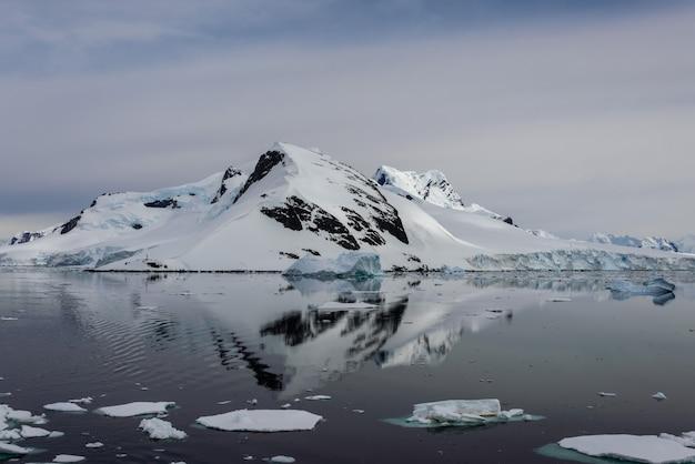Paysage Marin De L'antarctique Avec Réflexion Photo Premium