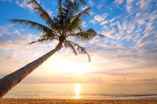 Paysage marin de belle plage tropicale avec palmier au lever du soleil. vue de mer plage en arrière-plan de l'été. Photo Premium