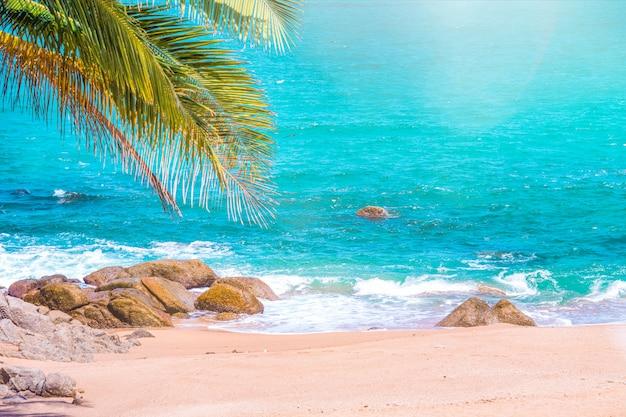 Paysage Marin Tropical, Coucher De Soleil Avec Un Ciel Magnifique Au Point De Vue Du Cap Promthep Phuket, Thaïlande Photo Premium