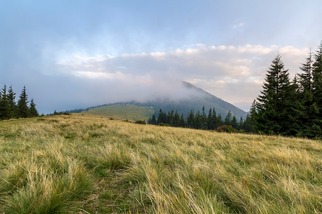 Paysage de montagne par beau temps ensoleillé. Photo Premium