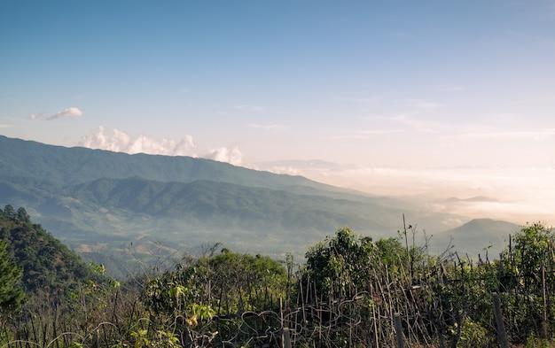 Paysage de montagne en soirée Photo Premium