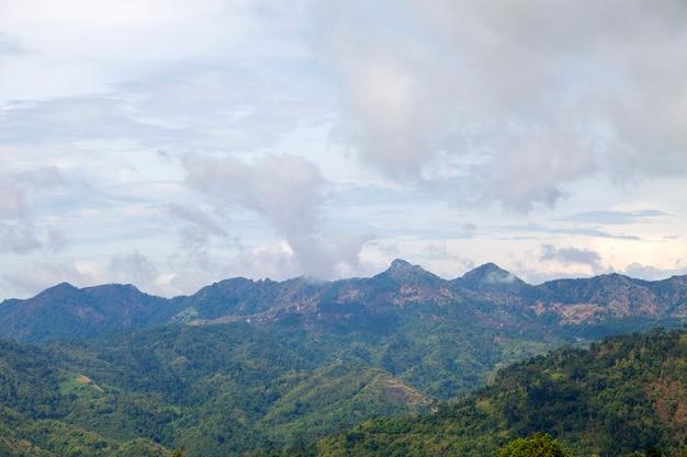 Paysage des montagnes dans la forêt tropicale humide nature abondante en asie thaïlande Photo Premium