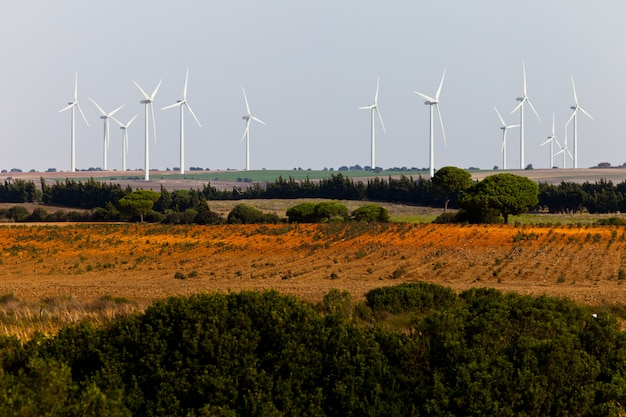 Paysage de moulins à vent Photo Premium