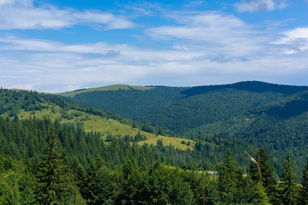 Paysage Nature D'été Des Montagnes Karpaty. Photo Premium