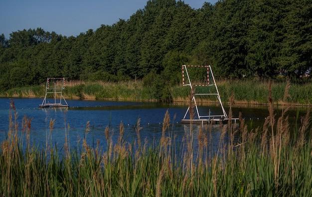 Paysage naturel hollandais autour d'amsterdam Photo Premium