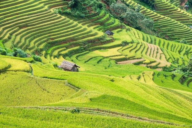 Paysage de rizière en terrasses avec le monument de la tribu cottage de mu cang chai Photo Premium