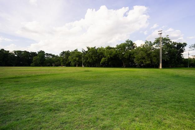 Paysage de terrain gazonné et de parc public verdoyant utilisé comme fond naturel, Photo Premium