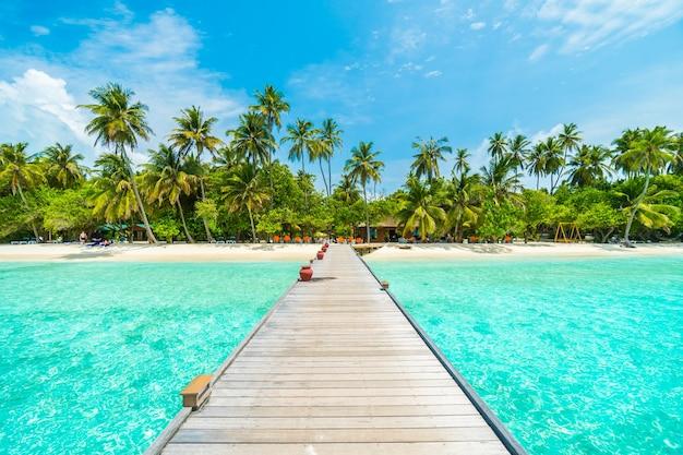 Paysage tropical vacances palme été Photo gratuit