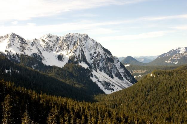Paysage Verdoyant Entouré De Montagnes Enneigées Photo gratuit