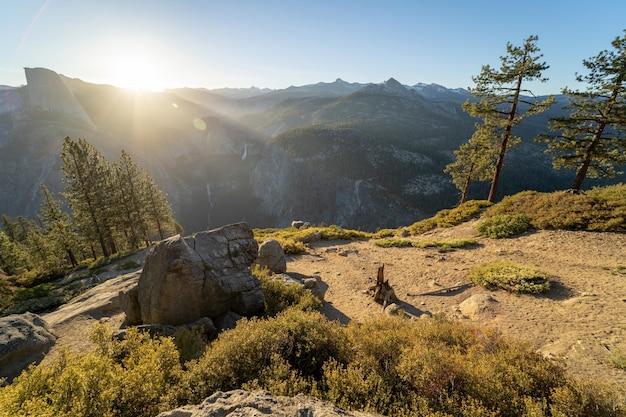 Des Paysages étonnants à Couper Le Souffle D'une Belle Forêt Dans La Campagne Photo gratuit