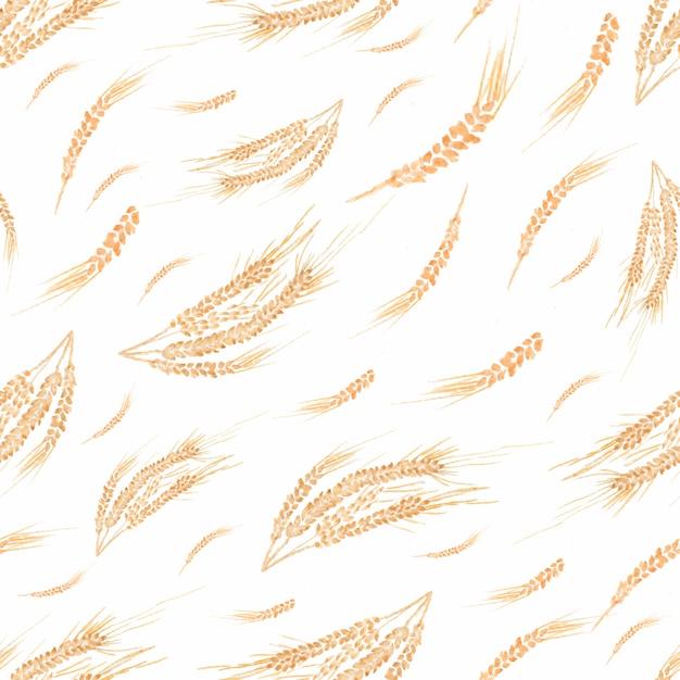 Peint isolé bio naturel frais eco aliments sur fond blanc. Photo Premium