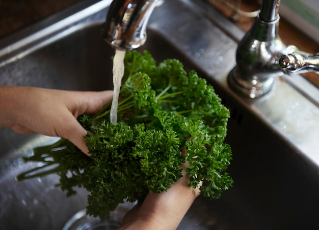Persil sous l'idée de recette de la photographie alimentaire de l'eau courante Photo Premium