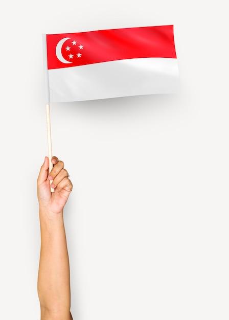 Personne agitant le drapeau de la république de singapour Photo gratuit