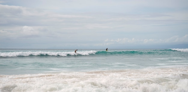 Personnes surfant dans l'océan le long de la côte de bali Photo Premium