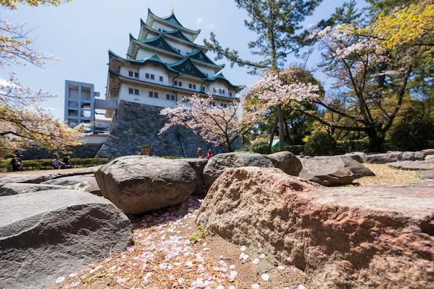 Pétales de fleurs de cerisier avec le château de nagoya Photo Premium