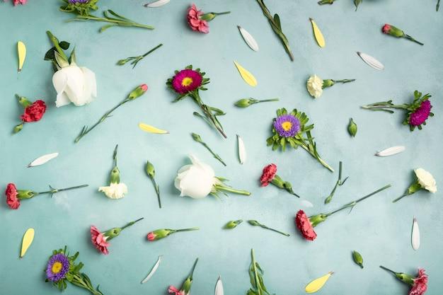 Pétales et fleurs fraîches sur fond bleu Photo gratuit