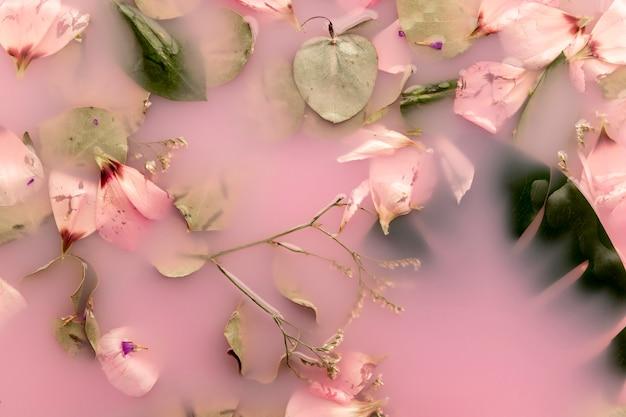 Pétales roses et feuilles dans de l'eau colorée rose Photo gratuit