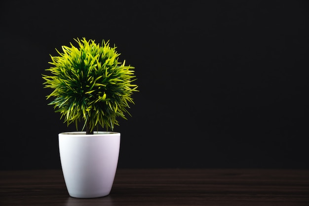 Petit arbre décoratif Photo Premium