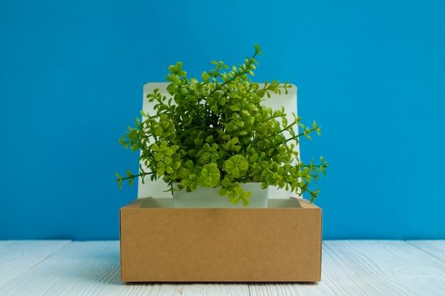 Petit arbre poussant dans une boîte en carton brun ou un plateau Photo Premium