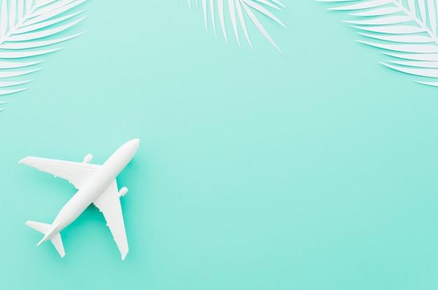 Petit avion jouet avec des feuilles de palmier blanches Photo gratuit