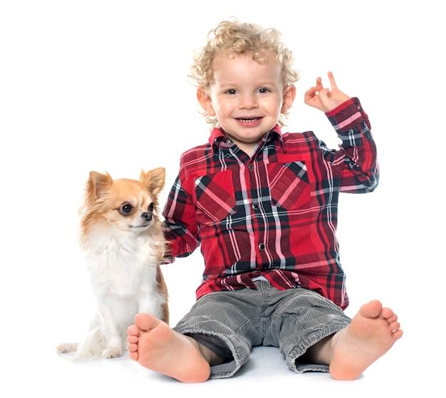 Petit garçon et chihuahua Photo Premium