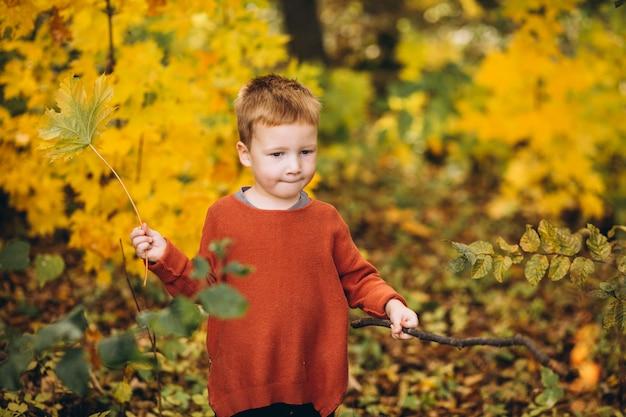 Petit garçon dans un parc d'automne rempli de feuilles d'or Photo gratuit