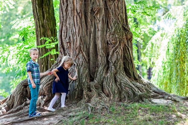 Petit garçon et fille frère et soeur, debout, à côté de, a, grand, souche, a, vieux arbre Photo Premium