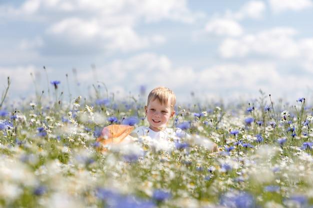 Un petit garçon marche sur le champ de camomille Photo Premium