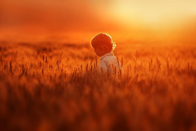 Petit garçon se promène dans le champ plein de blé doré Photo gratuit