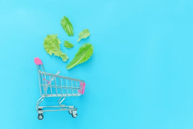 Petit Supermarché épicerie Chariot Pour Faire Du Shopping Avec Des Feuilles De Laitue Verte Isolé Sur Fond Coloré Pastel Bleu Photo Premium