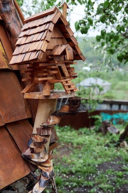 Petite Cabane En Bois. Mangeoire à Oiseaux Décorative En Bois Photo Premium