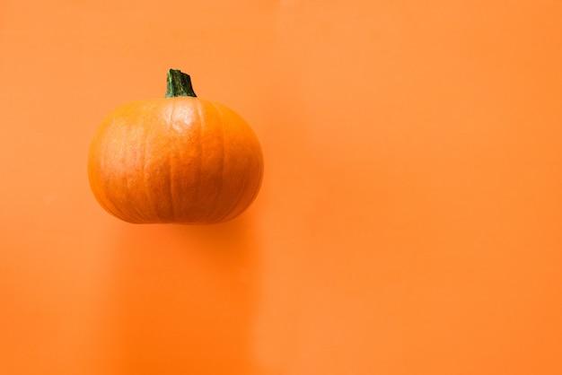 Petite citrouille sur orange Photo Premium